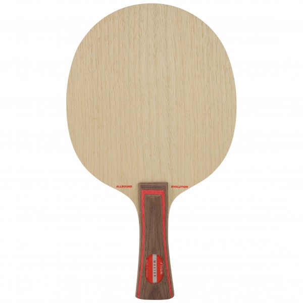 Tischtennis Holz Stiga Allround Evolution